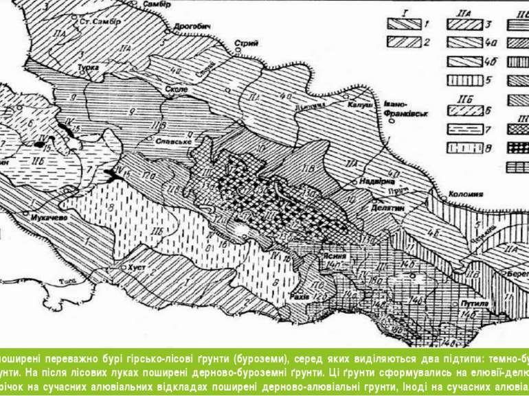 У межах парку поширені переважно бурі гірсько-лісові ґрунти (буроземи), серед...