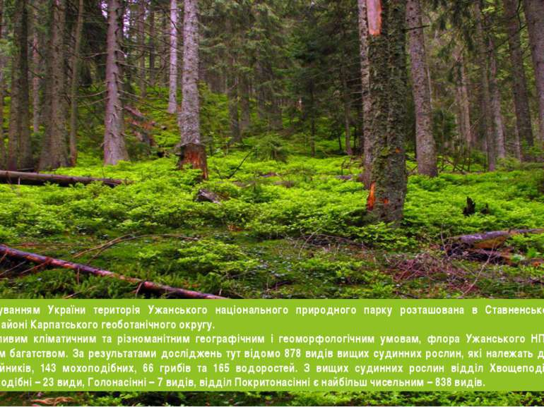 Згідно з районуванням України територія Ужанського національного природного п...