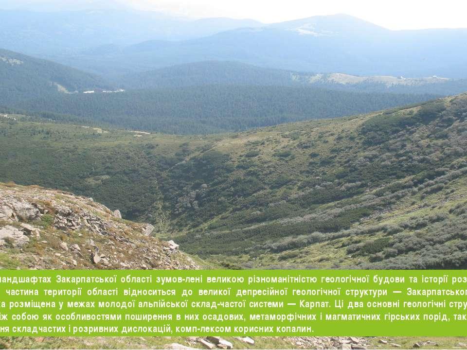 Різкі відміни у ландшафтах Закарпатської області зумов лені великою різномані...