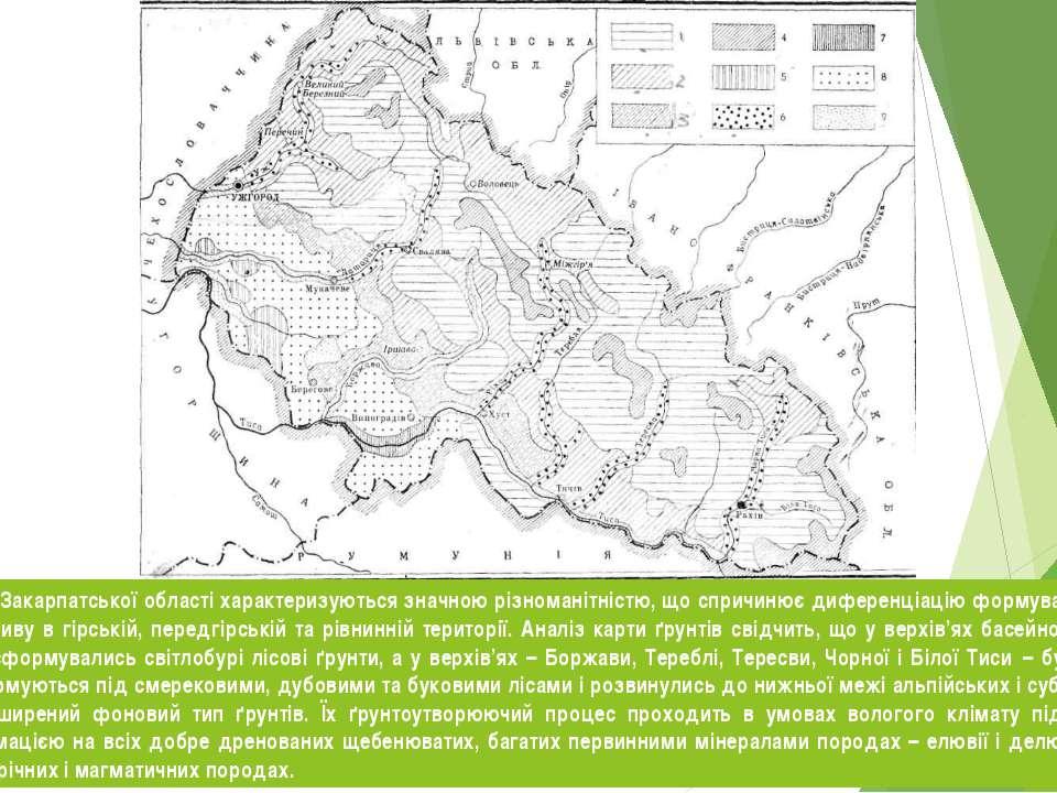 Природні умови Закарпатської області характеризуються значною різноманітністю...