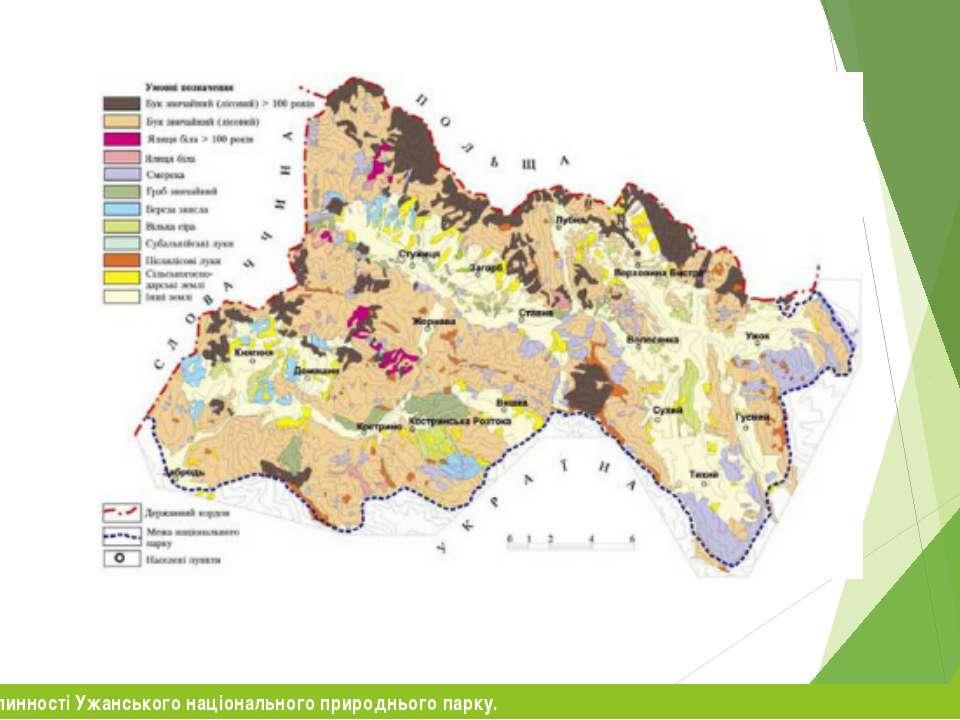 Карто-схема рослинності Ужанського національного природнього парку.