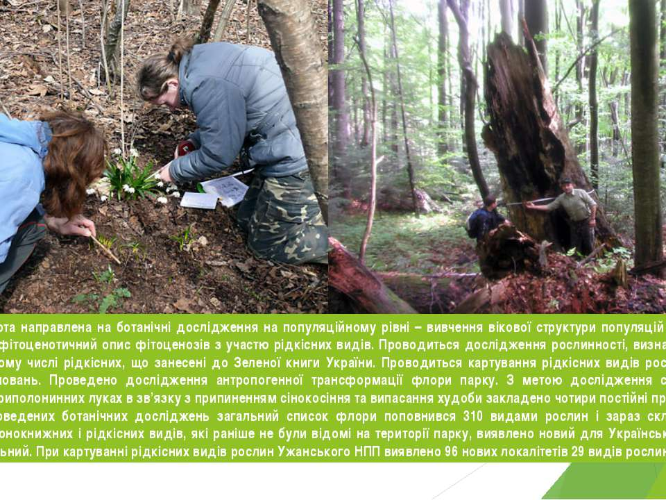 З 2004 року робота направлена на ботанічні дослідження на популяційному рівні...