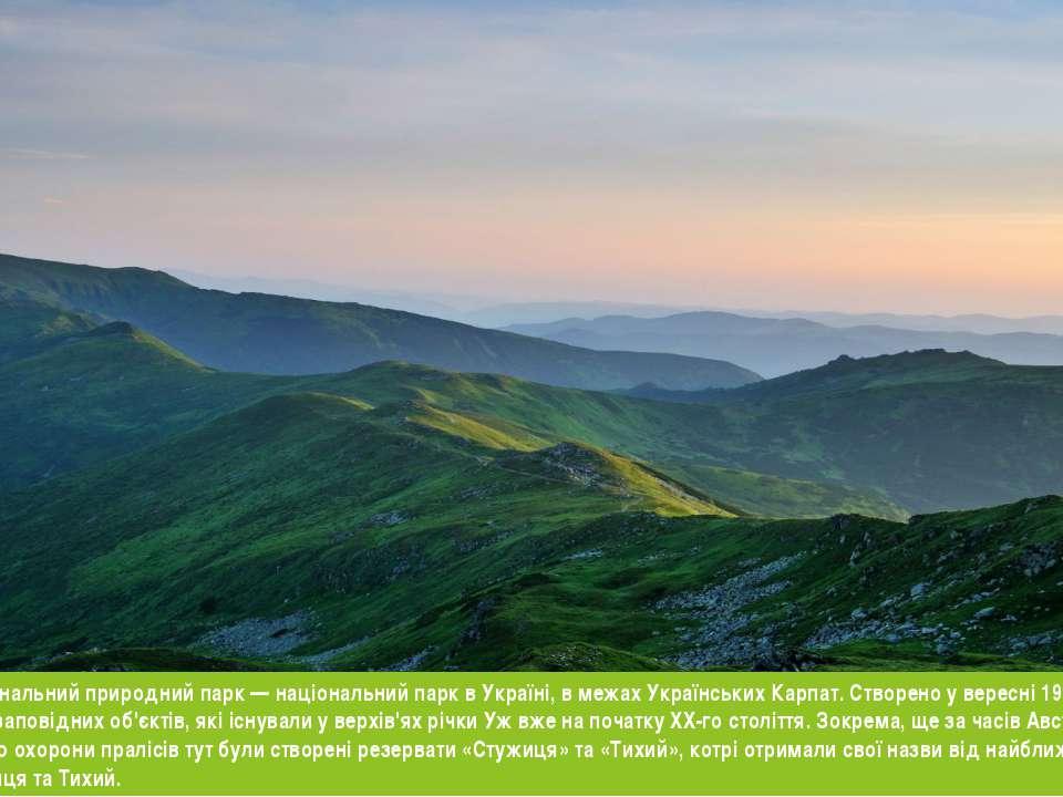 я Ужанський національний природний парк — національний парк в Україні, в межа...