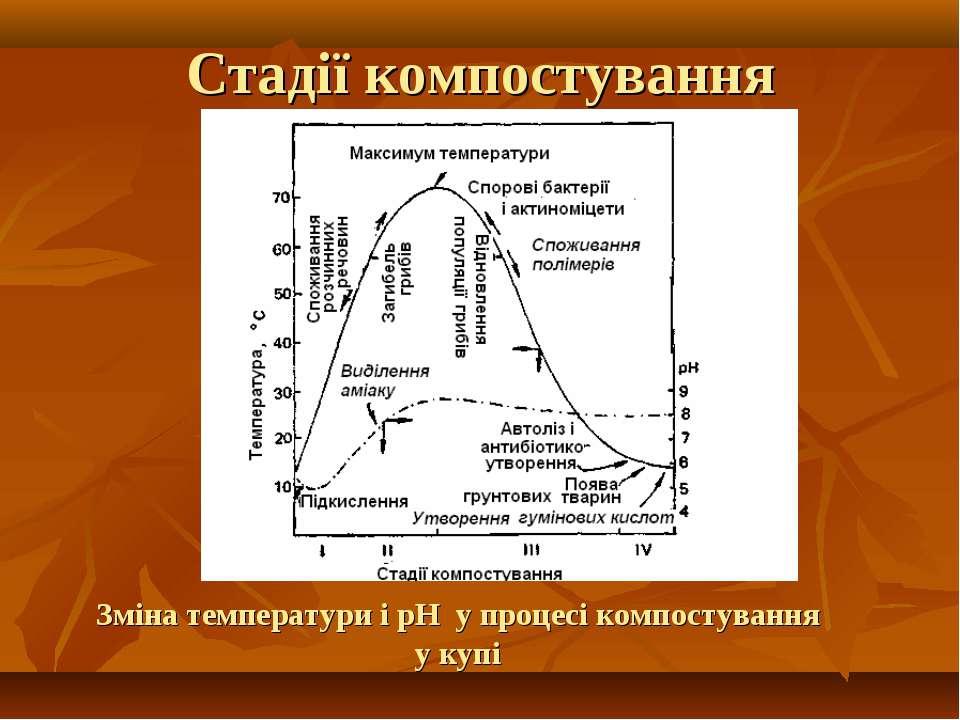 Зміна температури і рН у процесі компостування у купі Стадії компостування