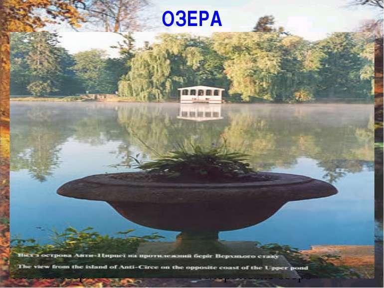 ОЗЕРА Лісове озеро Ліщиновий став Ахеронське озеро Соколиний став
