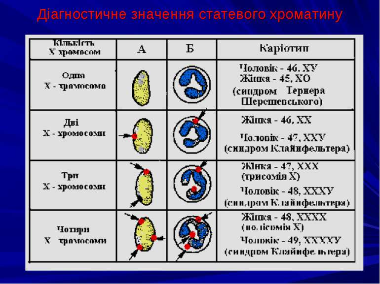 Діагностичне значення статевого хроматину