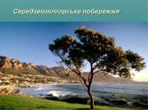 Середземноморське побережжя