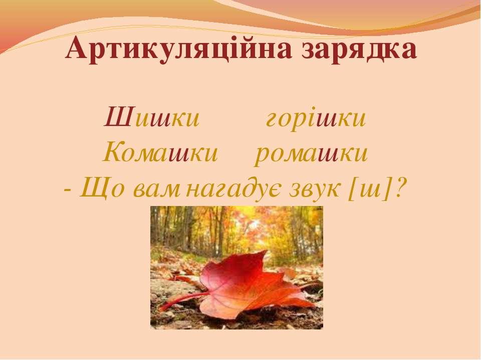 Артикуляційна зарядка Шишки горішки Комашки ромашки - Що вам нагадує звук [ш]?