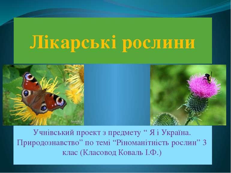 """Лікарські рослини Учнівський проект з предмету """" Я і Україна. Природознавство..."""