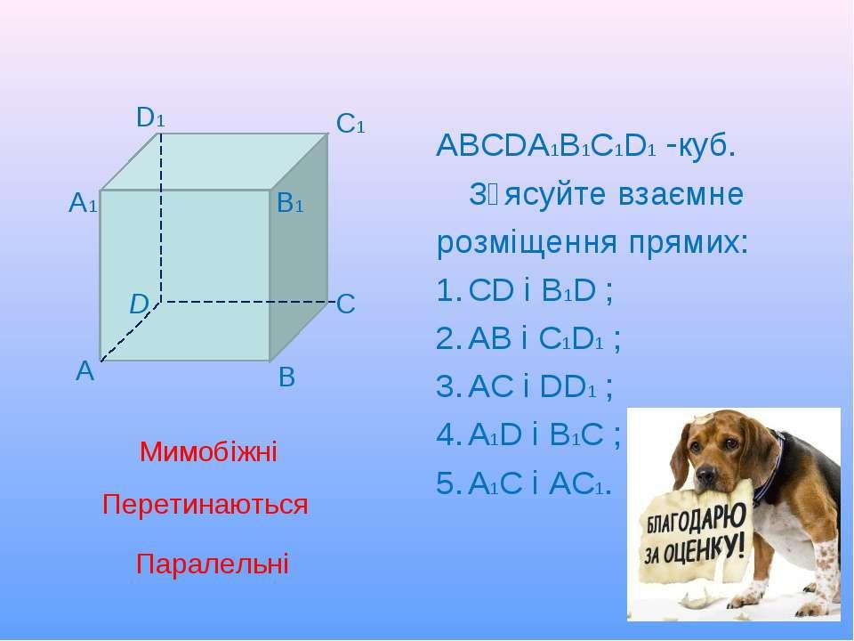 АВСDА1В1С1D1 -куб. З᾽ясуйте взаємне розміщення прямих: СD і В1D ; АВ і С1D1 ;...