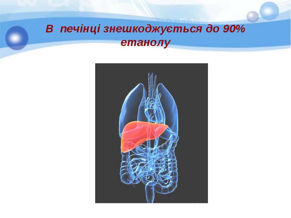 В печінці знешкоджується до 90% етанолу