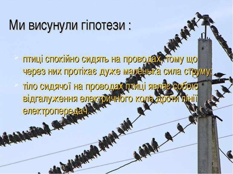 Ми висунули гіпотези : птиці спокійно сидять на проводах, тому що через них п...