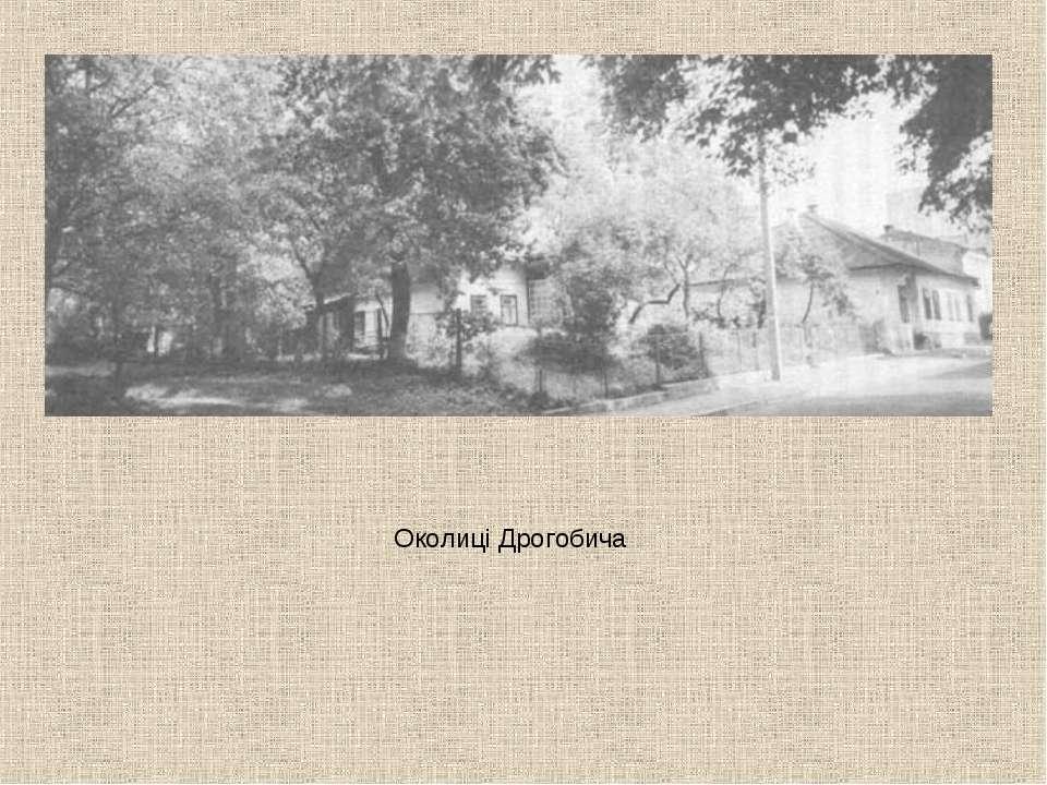Околиці Дрогобича