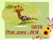 Птах року - 2012 ОДУД