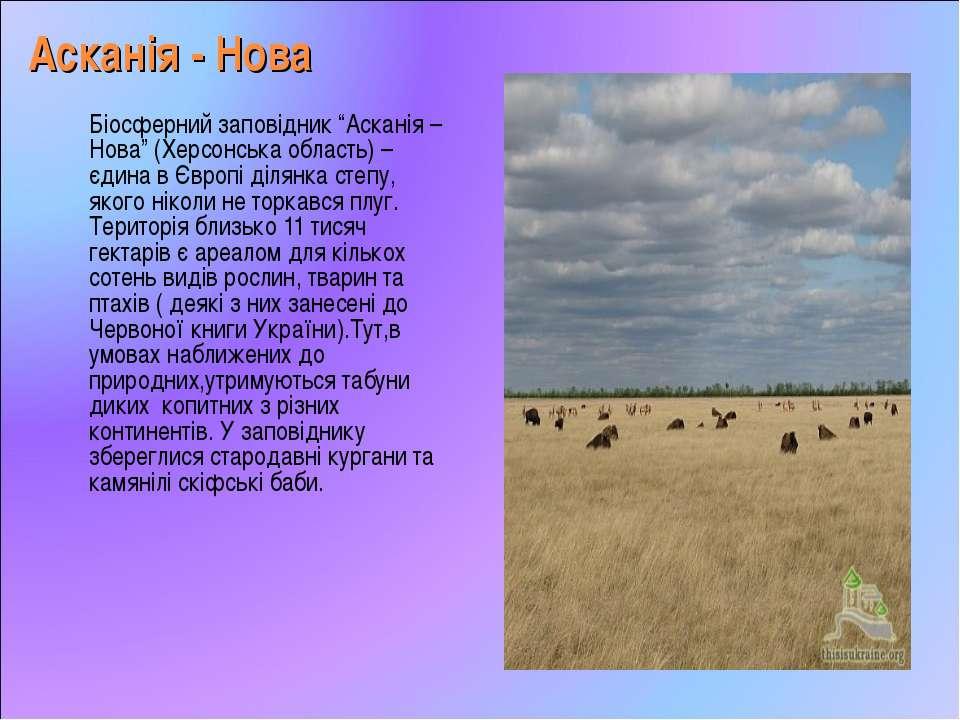 """Асканія - Нова Біосферний заповідник """"Асканія – Нова"""" (Херсонська область) – ..."""