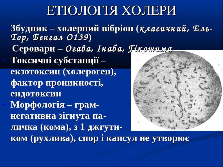 ЕТІОЛОГІЯ ХОЛЕРИ Збудник – холерний вібріон (класичний, Ель-Тор, Бенгал О139)...