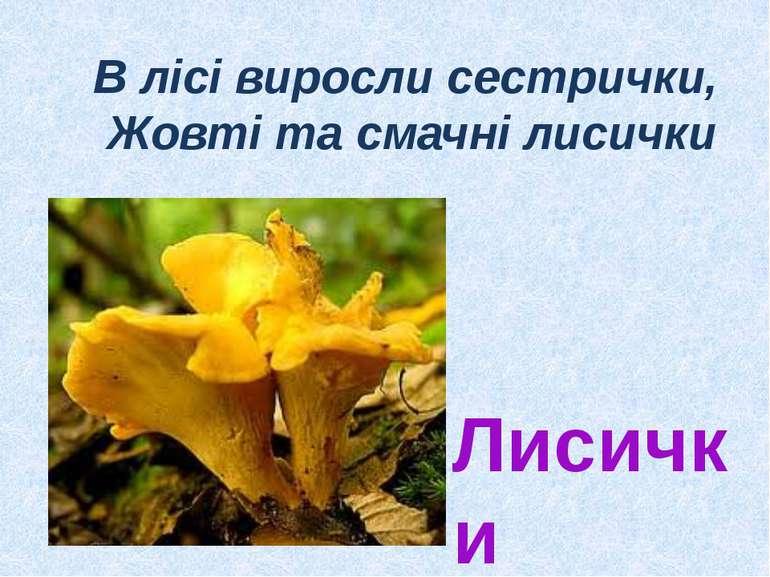 В лісі виросли сестрички, Жовті та смачні лисички Лисички