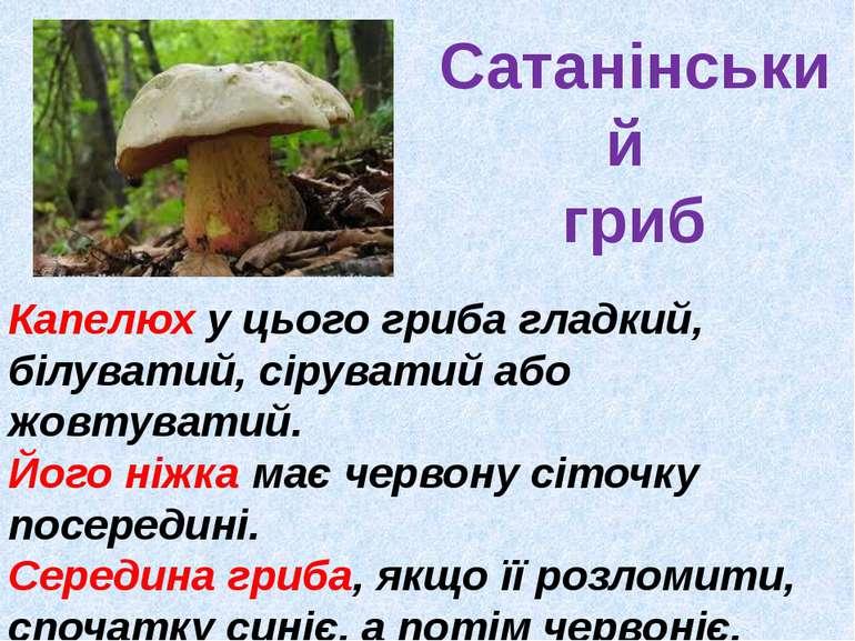 Сатанінський гриб Капелюх у цього гриба гладкий, білуватий, сіруватий або жов...