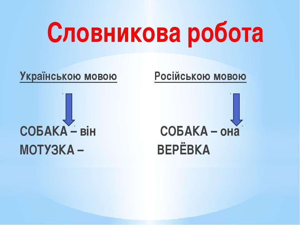 Словникова робота Українською мовою Російською мовою СОБАКА – він СОБАКА – он...