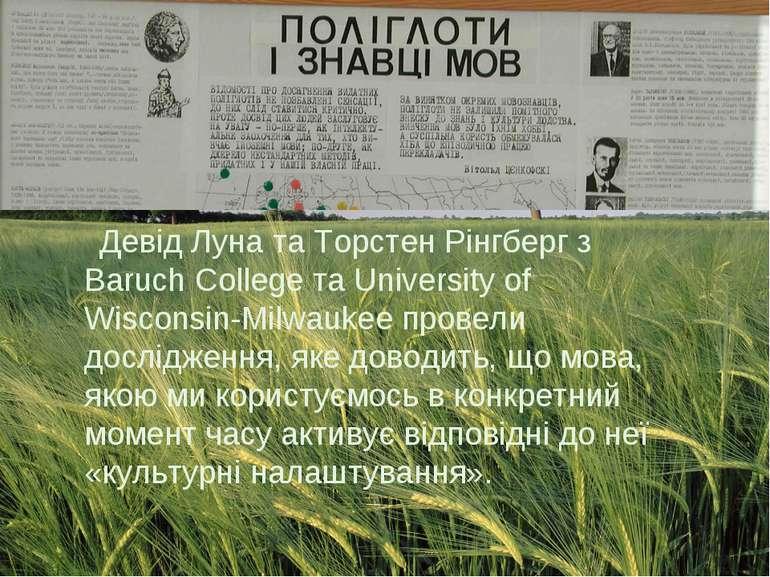 Девід Луна та Торстен Рінгберг з Baruch College та University of Wisconsin-Mi...