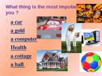 What thing is the most impotant for you ? a car a gold a computer Health a co...