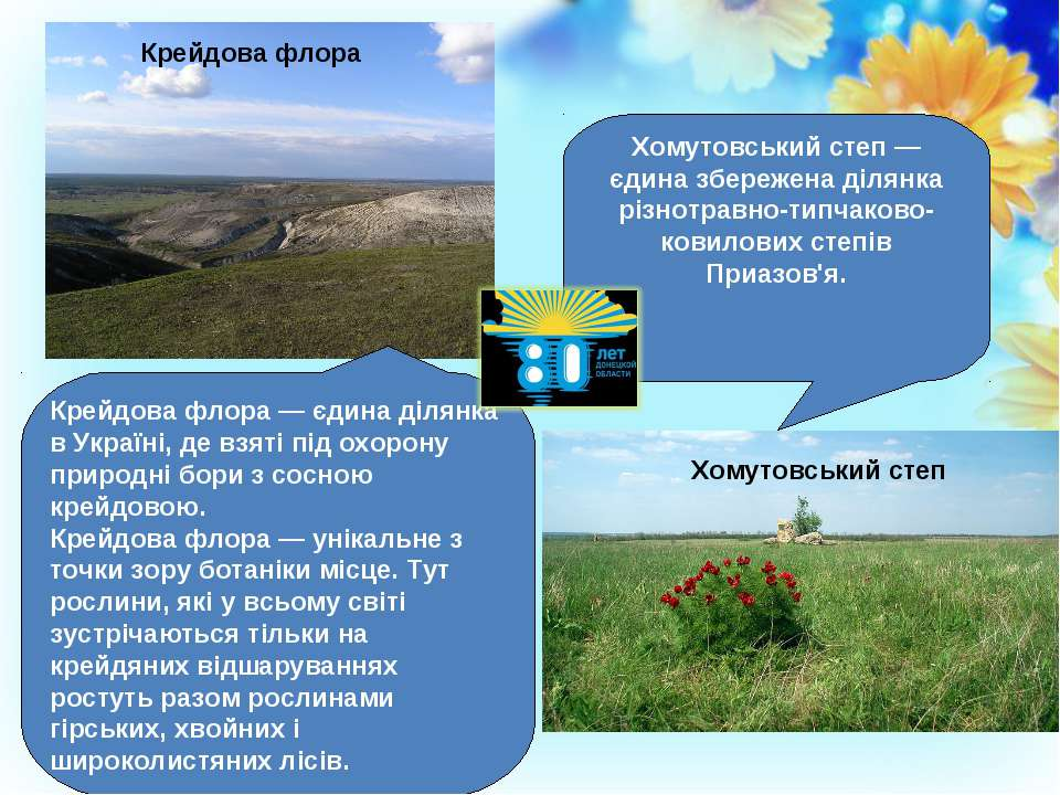 Крейдова флора — єдина ділянка в Україні, де взяті під охорону природні бори ...