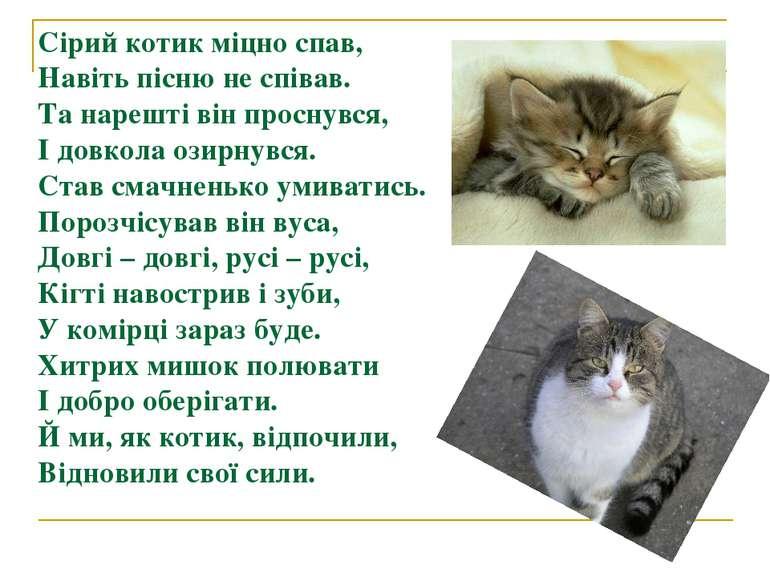 Сірий котик міцно спав, Навіть пісню не співав. Та нарешті він проснувся, І д...