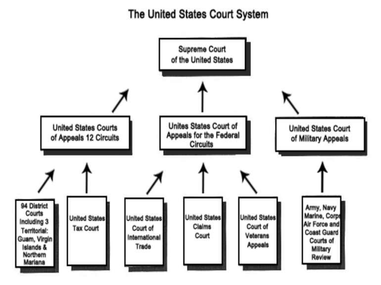 The Usa Court System презентація з англійської мови