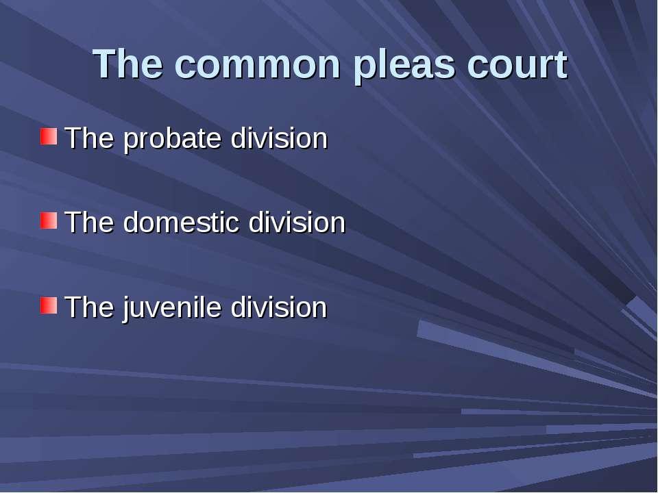 The common pleas court The probate division The domestic division The juvenil...