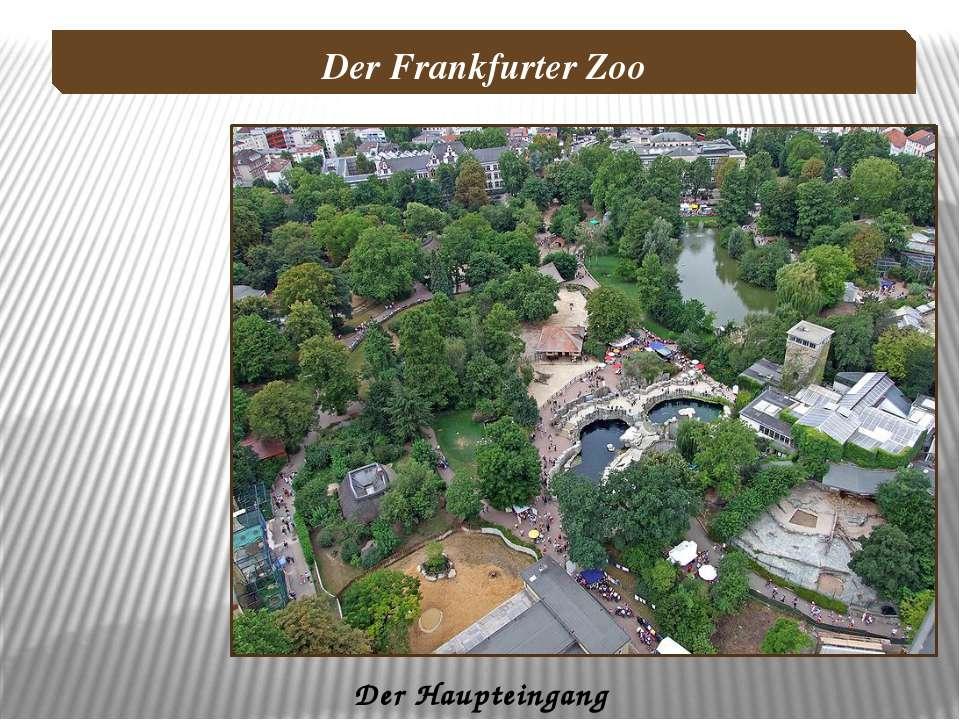 Der Haupteingang Der Frankfurter Zoo