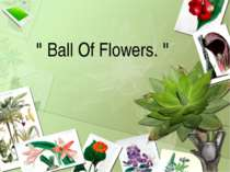 """ Ball Of Flowers. """