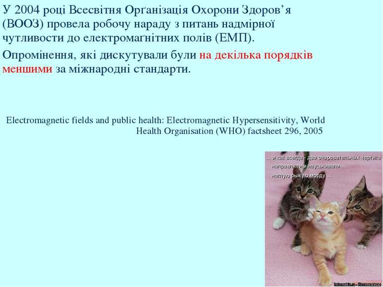 У 2004 році Всесвітня Орґанізація Охорони Здоров'я (ВООЗ) провела робочу нара...