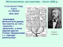 Філогенетична систематика – після 1859 р. Ernst Heinrich Philipp August von H...