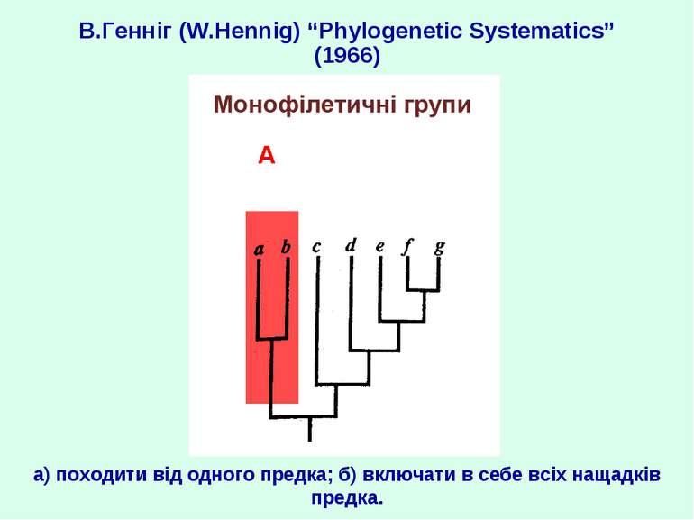 """В.Генніг (W.Hennig) """"Phylogenetic Systematics"""" (1966) а) походити від одного ..."""