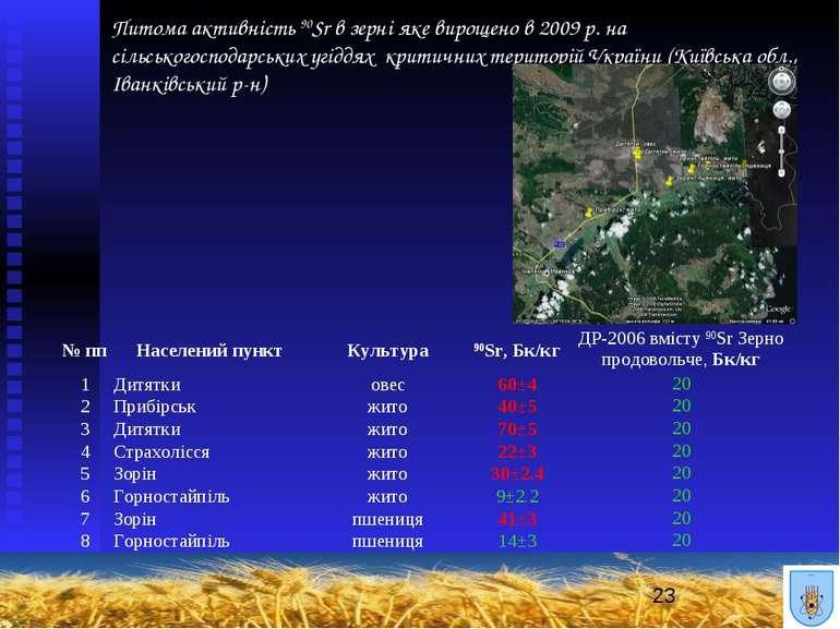 Питома активність 90Sr в зерні яке вирощено в 2009 р. на сільськогосподарськи...