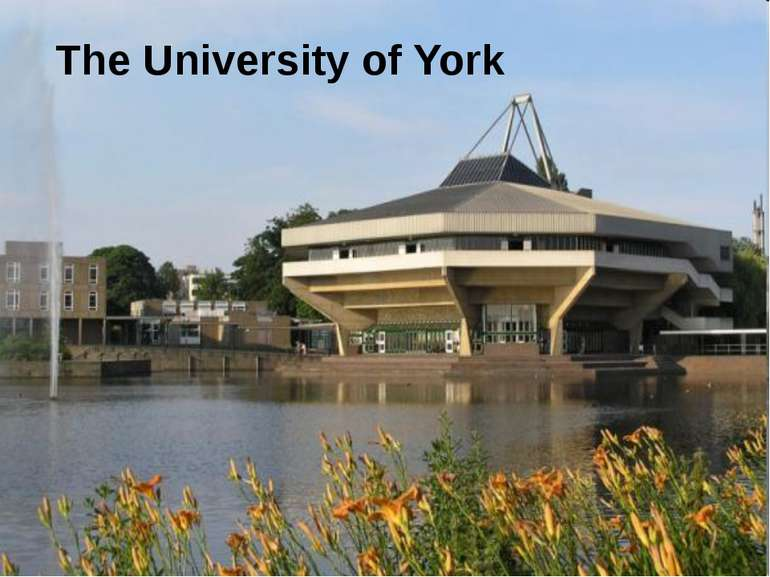 The University of York