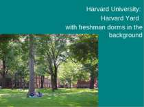 Harvard University: Harvard Yard   with freshman dorms in the background