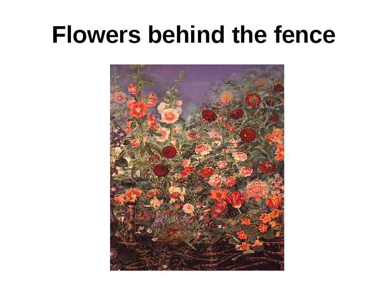 Flowers behind the fence