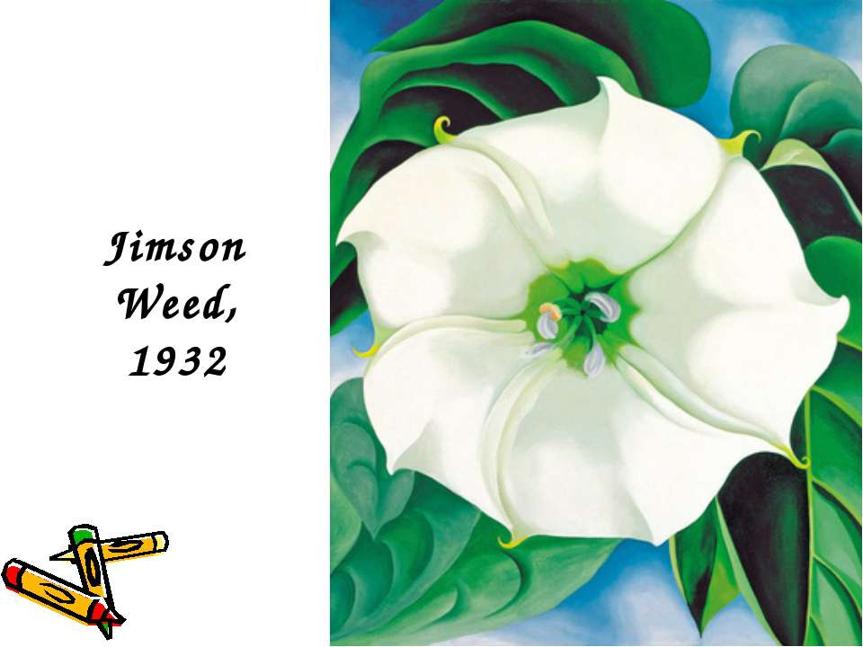 Jimson Weed, 1932