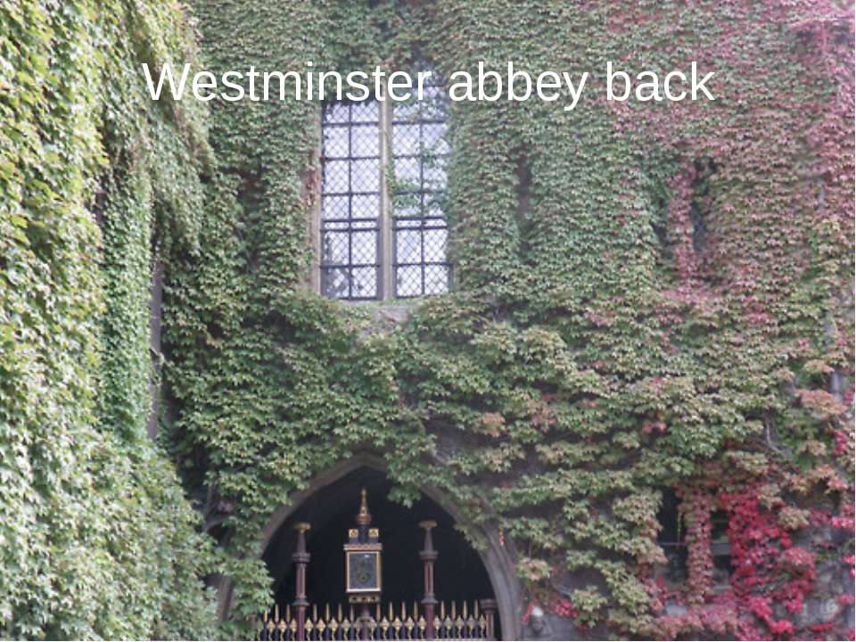 Westminster abbey back
