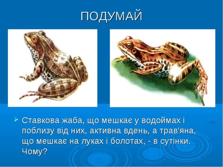 ПОДУМАЙ Ставкова жаба, що мешкає у водоймах і поблизу від них, активна вдень,...