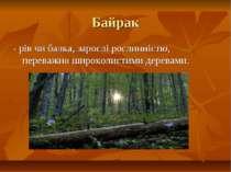 Байрак - рів чи балка, зарослі рослинністю, переважно широколистими деревами.
