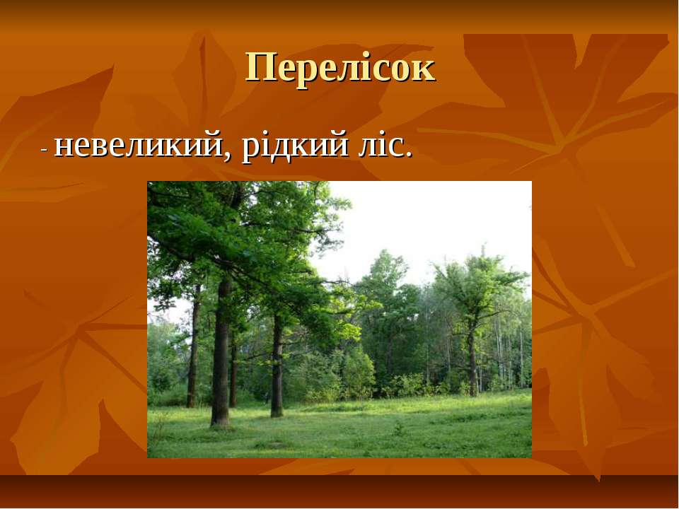 Перелісок - невеликий, рідкий ліс.
