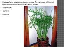 Вчитель. Зараз ми згадаємо кімнатні рослини. Три учні вдома, в бібліотеці при...