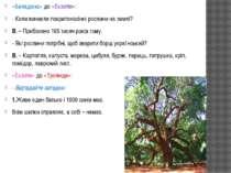 «Беладона» до «Екзотів»: - Коли виникли покритонасінні рослини на землі? В. –...