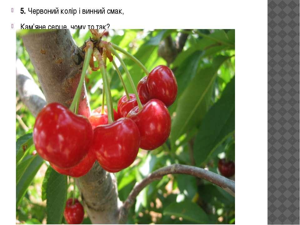 5. Червоний колір і винний смак, Кам'яне серце, чому то так?