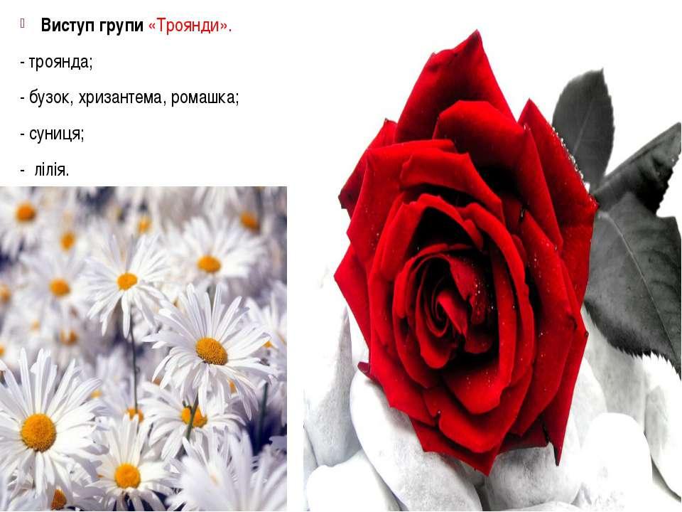 Виступ групи «Троянди». - троянда; - бузок, хризантема, ромашка; - суниця; - ...
