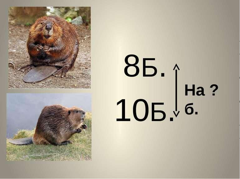 8Б. 10Б. На ? б.