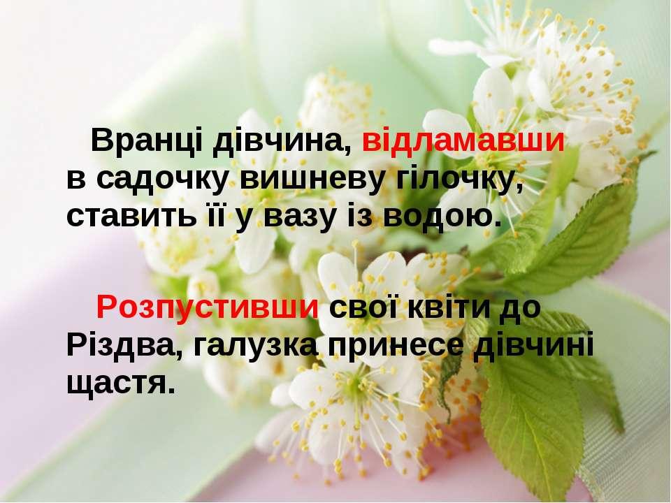 Вранці дівчина, відламавши в садочку вишневу гілочку, ставить її у вазу із во...
