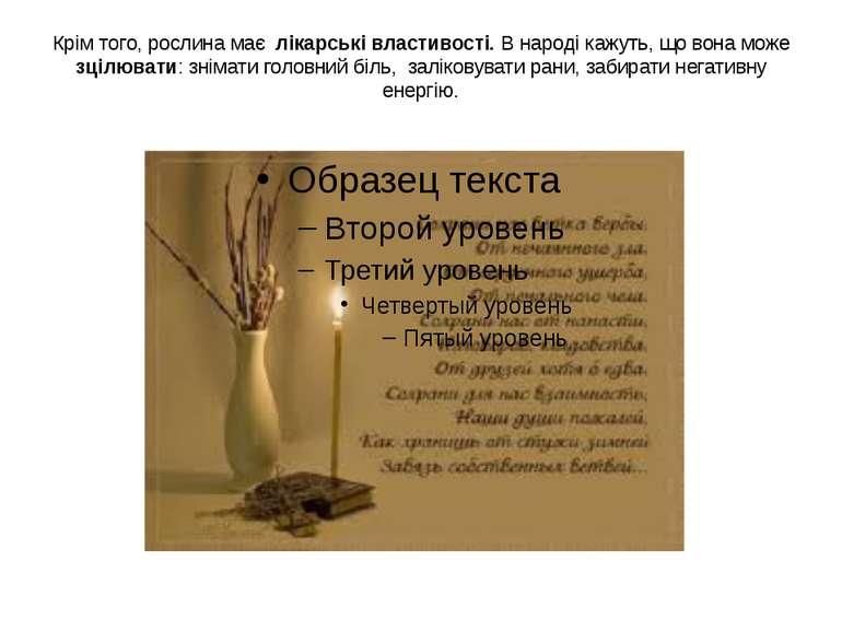 Крім того, рослина має лікарські властивості. В народі кажуть, що вона може з...